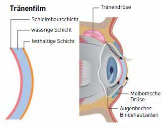 Grafik eines Tränenfilms - Thema: Afidera E-Eye