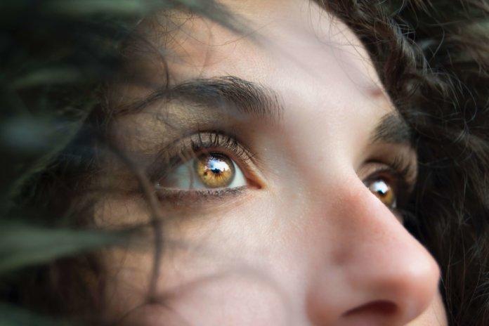 Lederhaut Auge