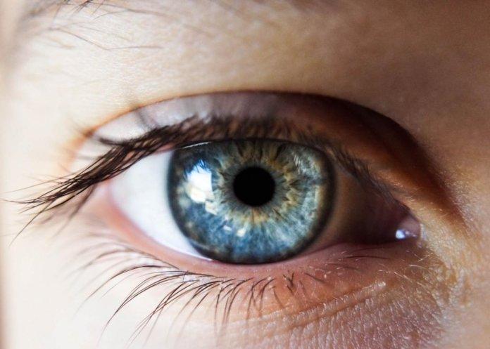 Pupille (Auge)