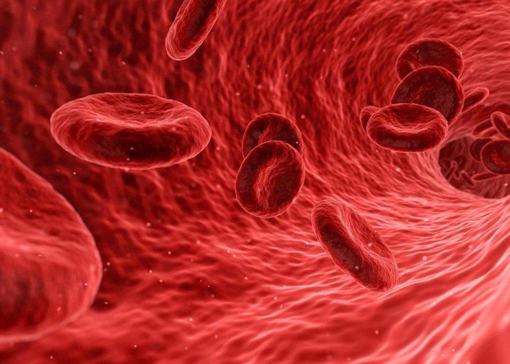 Retinaler Arterienverschluss: Ursachen